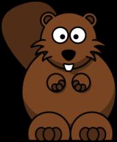 Cody.the.beaver